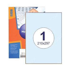 Этикетка самоклеящаяся 1 шт на листе А4 | 210х297 мм | 100 листов в упаковке